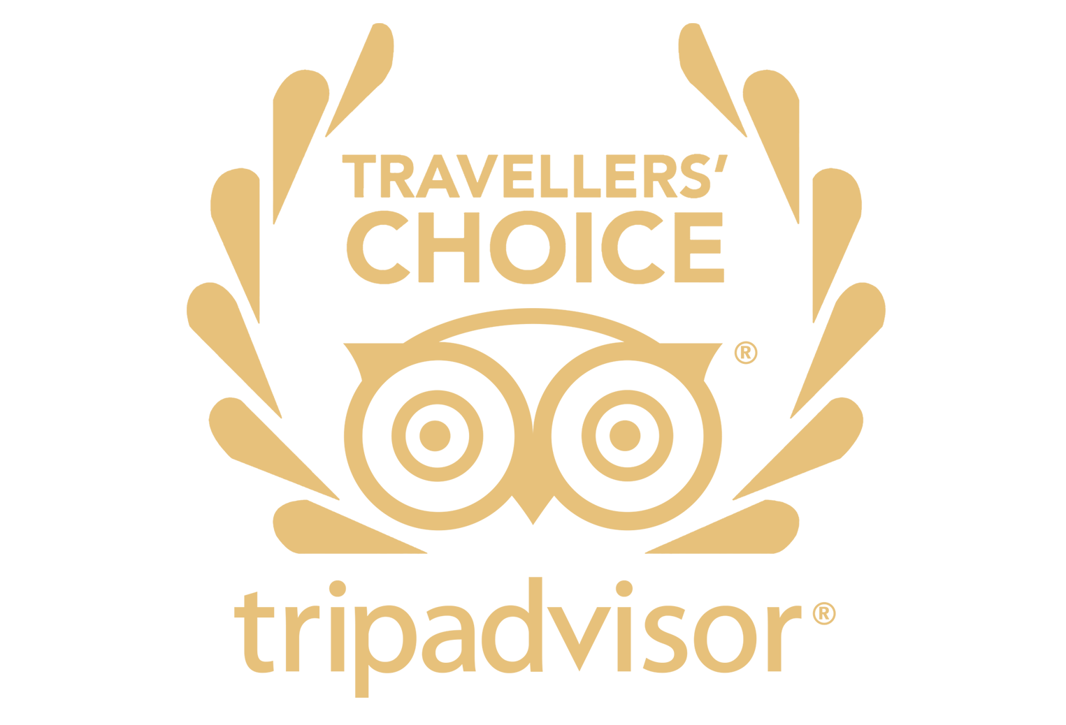 We Have Been Awarded By TripAdvisor Every Year From 2011 Our Visitors Consistently Write Great Reviews About Hotel